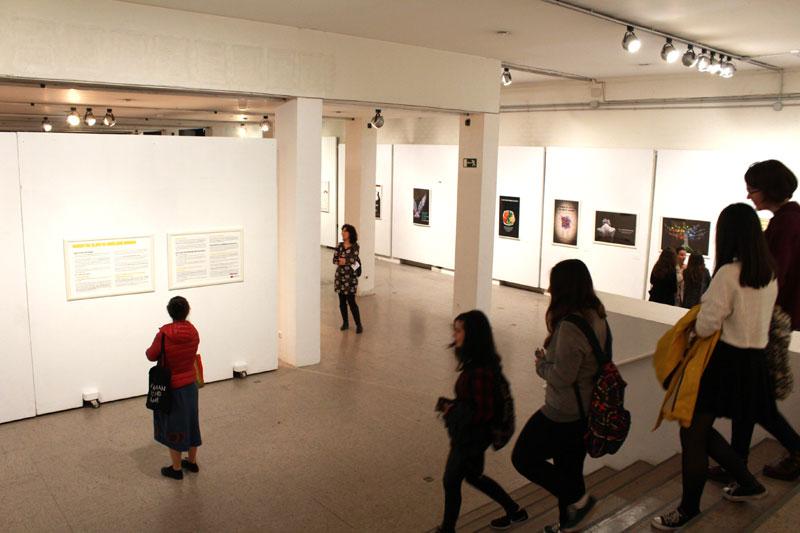 """Entreculturas y la Universidad Complutense inauguran la exposición """"Miradas que Migran"""""""